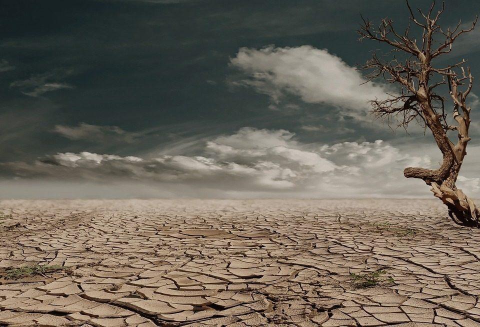 Clima impazzito, temperature mai così alte da 12mila anni