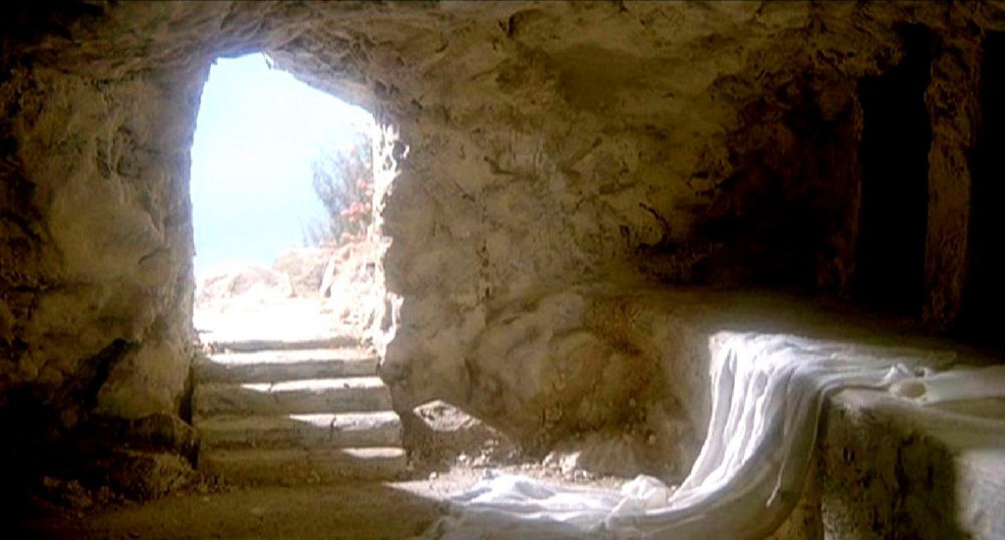 Avere una nuova vita, qui sta la meraviglia: Buona Pasqua!