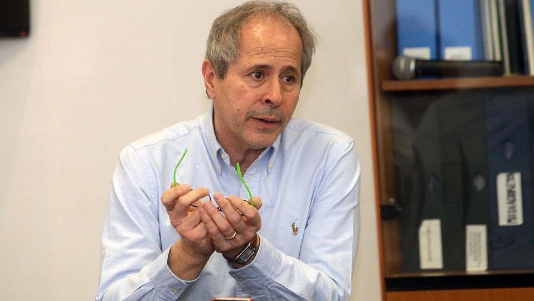 """Coronavirus, il virologo Crisanti: """"Non esiste il rischio zero"""""""
