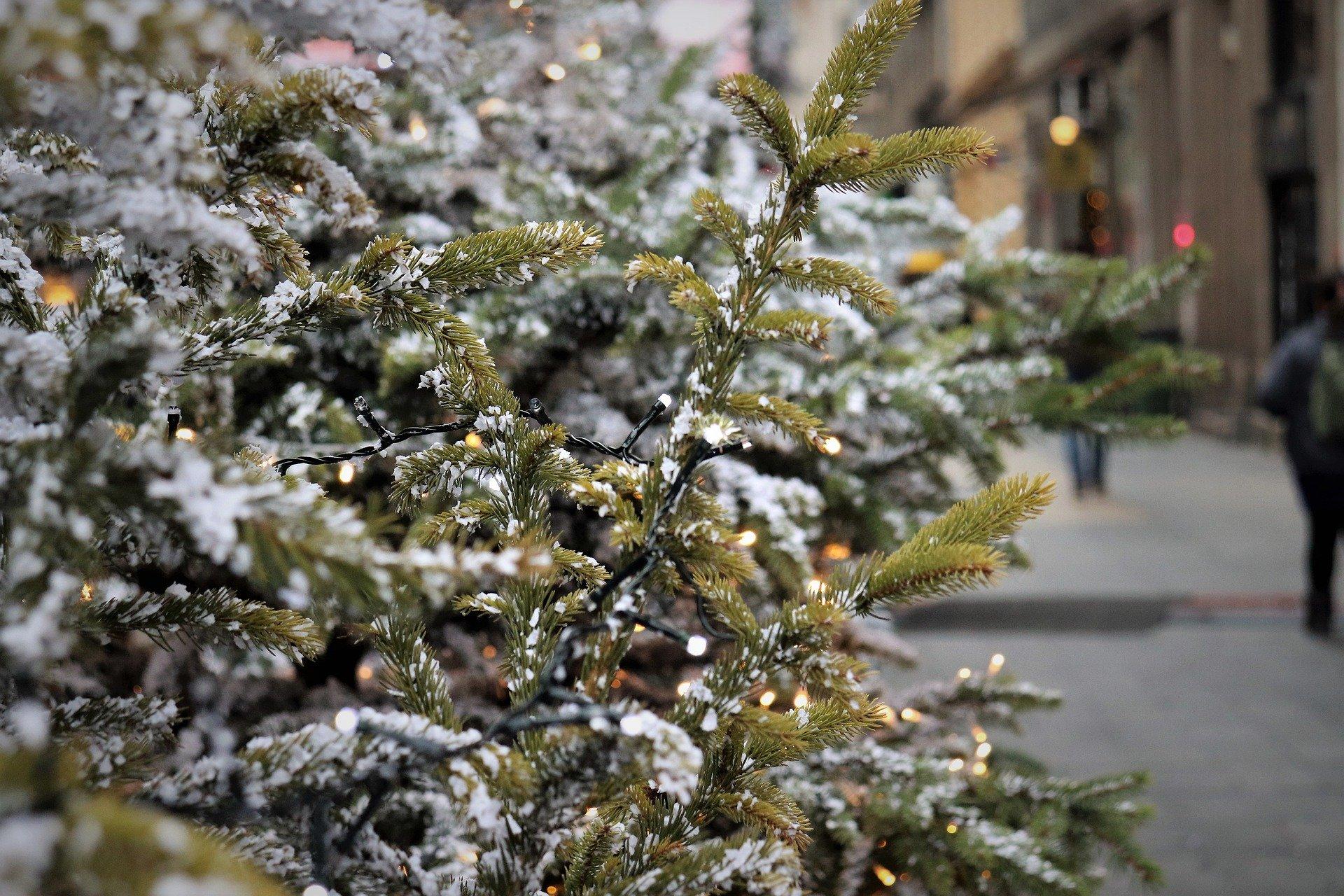 """Dpcm, linea rigida del governo: """"Necessari altri sacrifici, sarà un Natale diverso"""""""